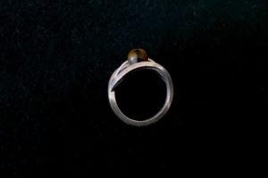 Ring «Tyger»