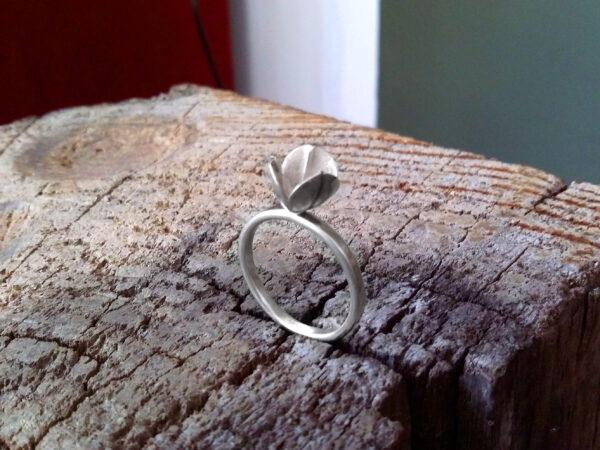 Ring «Capsula»