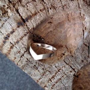 Ring «Zugvogel»